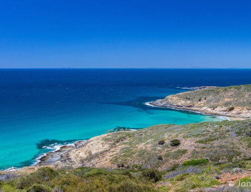 All's well in Paradise again after Cyclone Marcia